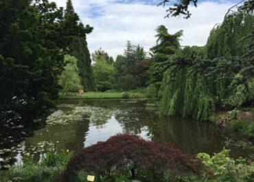 Canada_Vancouver_VanDusen Botanical Garden 6