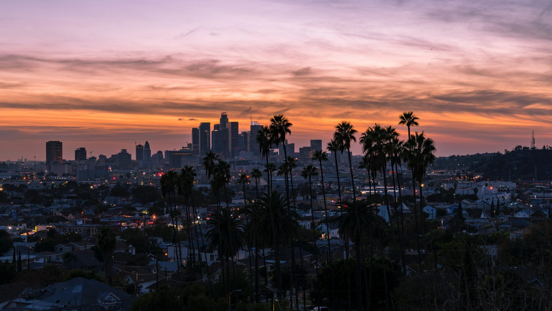 Los Angeles palmtrees sunset