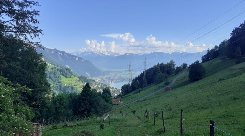 Lausanne hillside